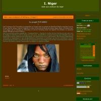 style aux couleurs du niger
